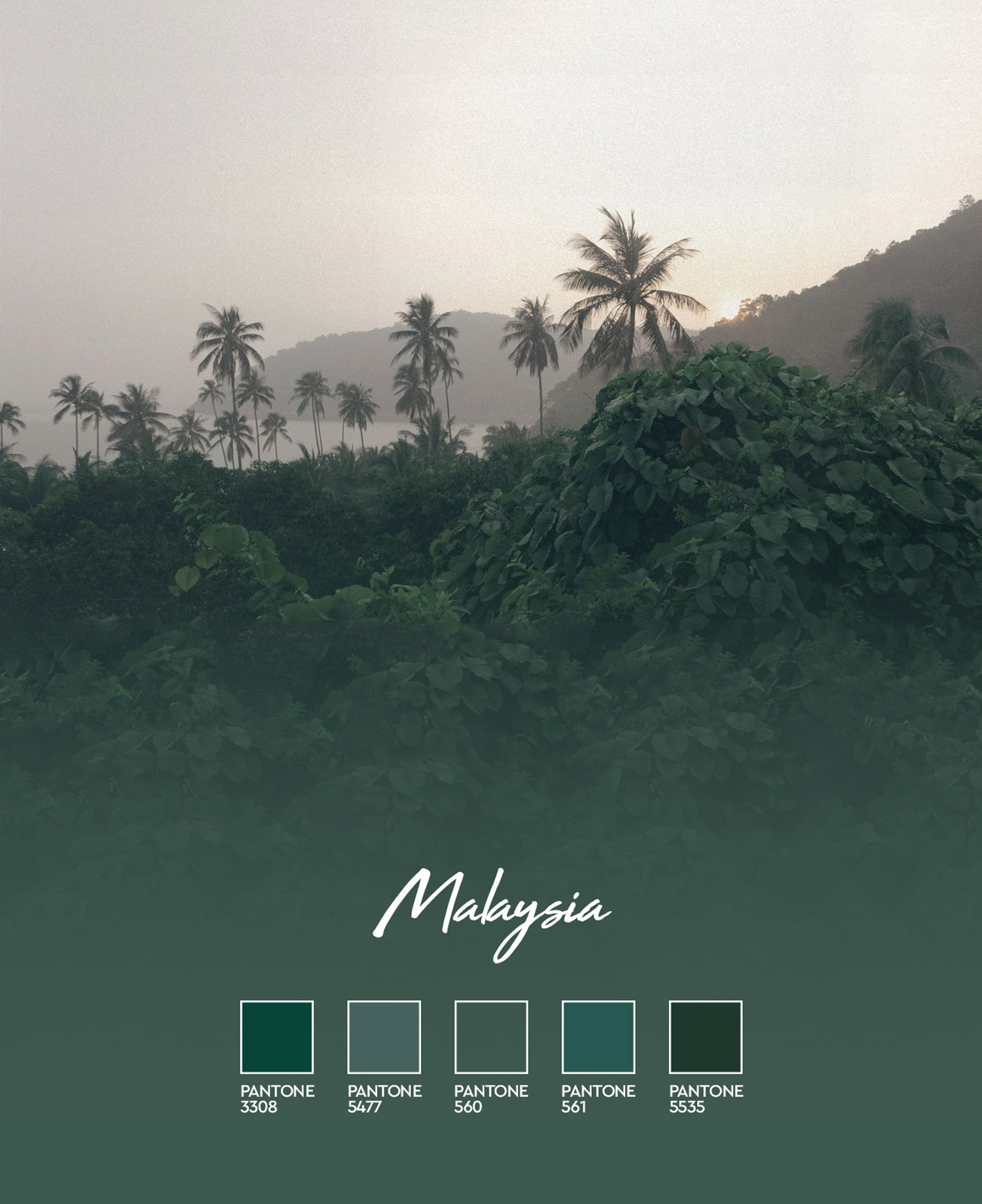 Color Coded: Dark Green moody hues in Malaysia