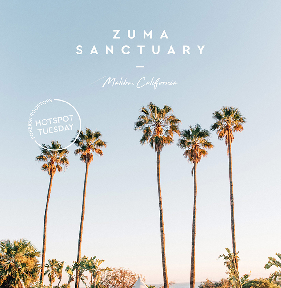 Zuma Sanctuary • Hotspot Tuesday